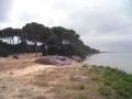 ufer_naturschutzgebiet