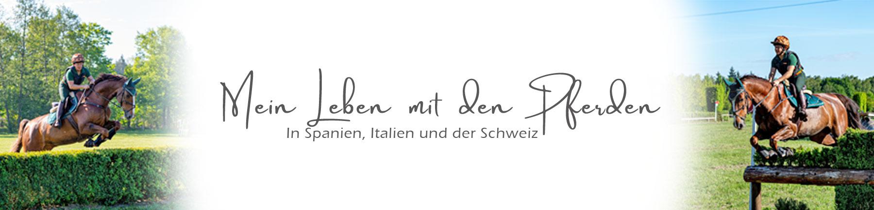 Logo Hauptseite